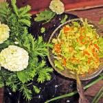 Surówka z młodej kapusty do obiadu