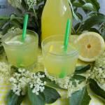 Lemoniada z kwiatów czarnego bzu i cytryny