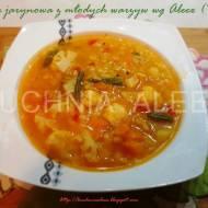 Zupa jarzynowa z młodych warzyw wg Aleex (TM5)