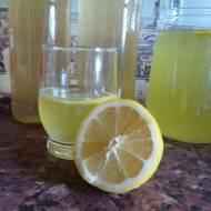 Syrop miętowo - cytrynowy