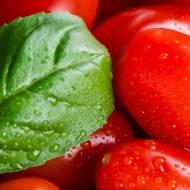 Pomidor pełen zdrowia