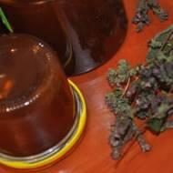 Galaretka z Lebiodki pospolitej –czyli oregano
