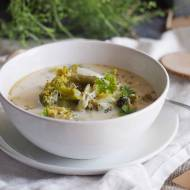 Zielona zupa warzywna z kurczakiem / Green vegetable soup with chicken