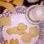 Delikatnie pomarańczowe ciasteczka i KONKURS z Protonik
