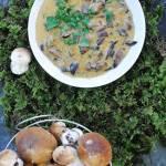 Sos z grzybów leśnych na gęsto