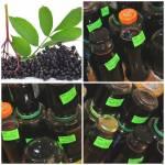 sok z owoców czarnego bzu