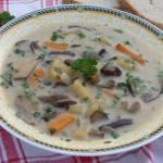 Zupa grzybowa ze świezych grzybów z ziemniakami