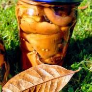 Marynowane rydze, czyli grzybki w zalewie octowej