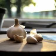 Jak przechowywać czosnek, by na dłużej zachował aromat i właściwości zdrowotne?