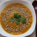 Rozgrzewająca zupa z marchewki, pora i kolendry