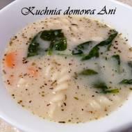Zupa ze szpinakiem i makaronem