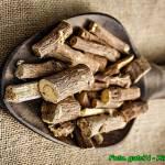 Nalewka z korzenia lukrecji ( hamuje rozwój bakterii, wirusów, grzybów )