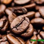 Likier kawowy ( z laską wanilii ).