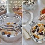 Owsianka z jogurtem i owocami