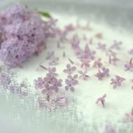 Cukier z lilaka