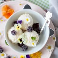 Lody jogurtowe z mlekiem (bez laktozy, bez jajek)