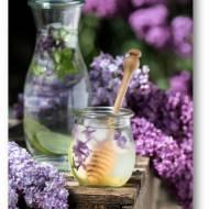 Orzeźwiająca woda z limonką, mięta, miodem i kostkami lodu z kwiatami bzu