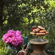 Drożdżowe bułeczki z czereśniami i rabarbarem!