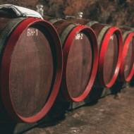 Winnice Tokaj – czyli jak kupić dobre wino