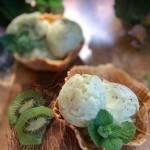 Sorbet z owoców kiwi