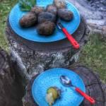 Ziemniaki pieczone w żarze ogniska