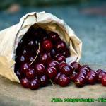 Nalewka wiśniowo - owocowa ( o bardzo ciekawym smaku i aromacie ).