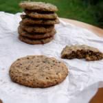Ciasteczka z masłem orzechowym i kawałkami czekolady
