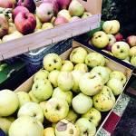 Przepisy na jabłka i zaproszenie do KONKURSU