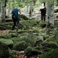 Leśne wędrówki i proste rzeczy, które sprawiają radość