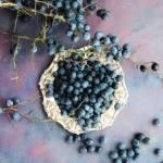 Śliwa tarnina -  zbiór, właściwości zdrowotne