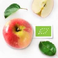 Zielony listek żywności ekologicznej na opakowaniu – czy wiesz co dokładnie oznacza?