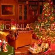 Życzenia bożonarodzeniowe od Aleex