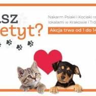 Masz Łapetyt – akcja w Krakowie i Trójmieście !