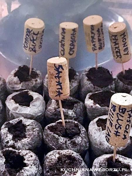 Tabliczki do oznaczania sadzonek – zero waste