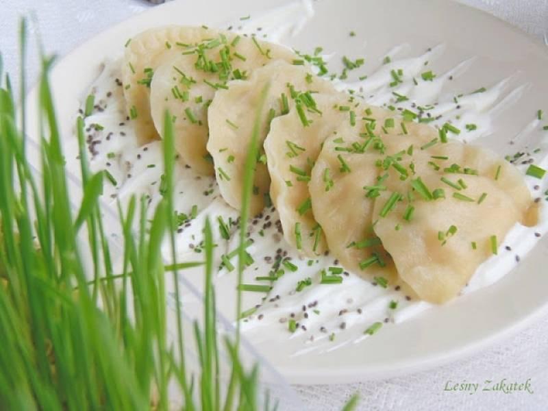 Pierogi z białym serem ziarenkami szałwii hiszpańskiej i zielonym owsem