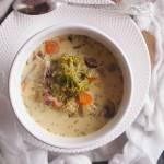 Zupa brokułowa z pieczarkami / Broccoli and mushroom soup