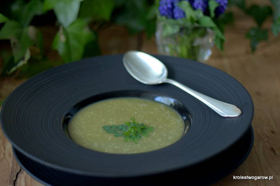 Zupa z młodej włoszczyzny z kalarepką