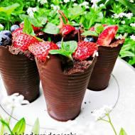 Czekoladowe doniczki z truskawkami i borówkami