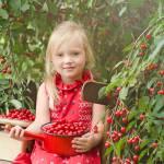 Dżem wiśniowy z pektyną