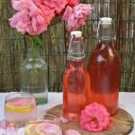 Z ŁĄKI NA TALERZ: Syrop z płatków róży