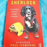 Sherlock. Prawdziwa historia psiego strażaka - recenzja