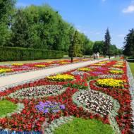 Partery Hellwiga - dywany kwiatowe w Ciechocinku woj. kujawsko - pomorskie