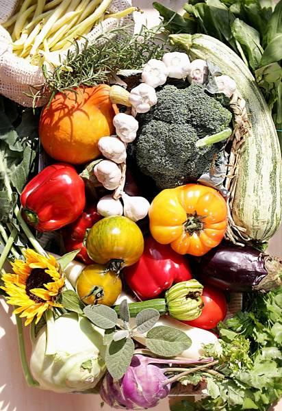 Bezpłatny mini e-book: Szybkie i lekkie obiady na lato i wczesną jesień