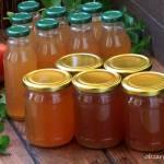 Napój jabłkowo - miętowy bez chemii