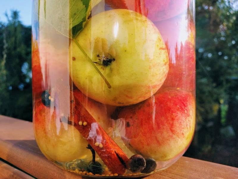 Kiszone jabłka z przyprawami korzennymi