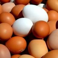 Jak sparzyć jajka – wyparzanie jajek krok po kroku