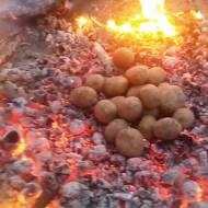 Ziemniaczki z ogniska