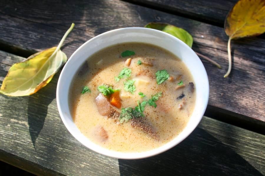 Śmietankowa , delikatna zupa grzybowa