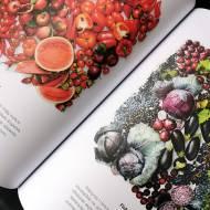 Jeść zdrowej i żyć dłużej – nowa książka Lidl Polska