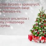 Życzenia bożonarodzeniowe...